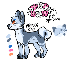 prince cas by meowst