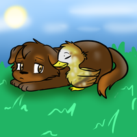 Duck and a Puppy by MariobrosYaoiFan12