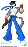 Andy Katt Fighter Form by AndrewDickman