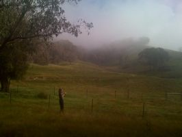 Fog rolling along the hills by the-wire