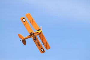 Tiger Moth by Rooivalk1