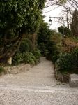 The Path in the Garden_Stock by MJ84-StockPhotos