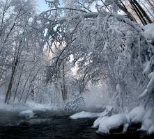 frosty moment on the river by KariLiimatainen