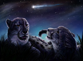 Meteor Shower by animalartist16