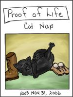 POL Cat Nap shoes by RowanWatersprite