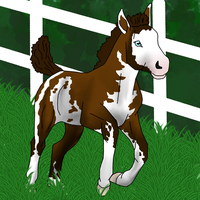 Drawing: horse by ShapeShifter314