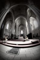 Cathedral St Pierre III by AuroraxCore