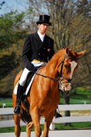KR09 Dressage 17 by zeeplease