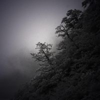 Dark Solitude by nool2i