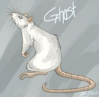 Ghost the Rat by ArcaneAvis