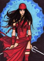 Elektra Commission by grantgoboom
