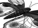 Clockwork Butterfly Wire 2 by The-5