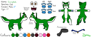 Full Reference Sheet by CoolCodeCat