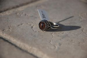SOLD Sable Serpents Eye - Taxidermy Glass Eye Ring by kittykat01