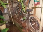 Rusted Tandem Bike by Mister-Lou