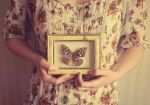 Butterly love by fairyladyphotography