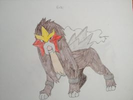 Entei by Darkshadowarts