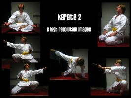 Karate 2 by Mithgariel-stock