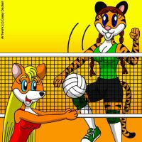 Furry Volleyball Match by CaseyDecker