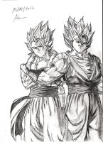 Gogeta and Vegetto ( Dragonball ) by Robert-Marten