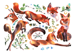 foxes by mariposa-nocturna