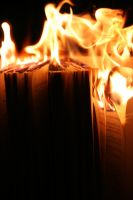 Burn the Pages Deux by kellymlacy