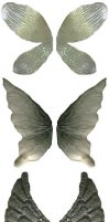 5 Sets of Demon or Faery Wings by FantasyStock
