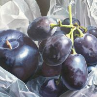 Plum and Grapes by Lillemut