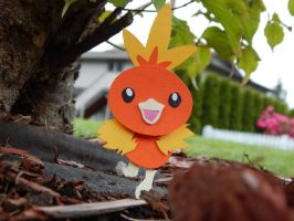 Torchic by GopherFrog