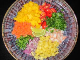 colorful ceviche by smokinpanda