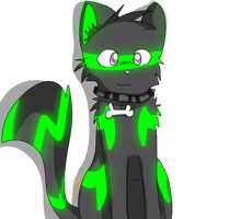 GLOWCAT. owo by nightpoop