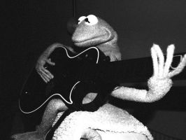Kermit Guitar Hero by Lonecow