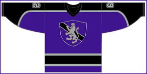 LA Kings Jersey by Ronburgandy