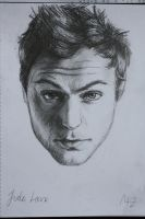 Jude Law by Molly-Z
