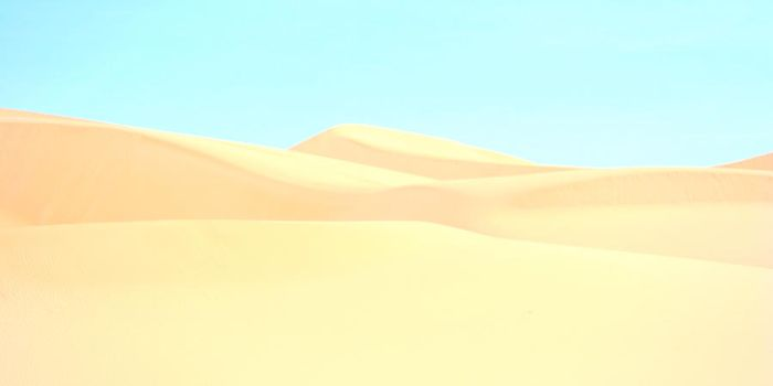 The Next Dune II by EisenFeuer