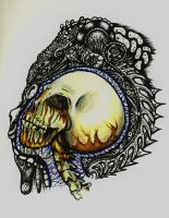 skull? by charly-d-squirrel