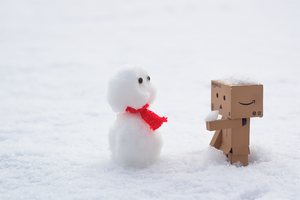 Danbo + Snowman by Expose42