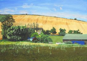 Cornfields at Loughane, July 2012 by eastcorkpainter