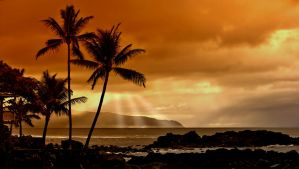 Tropical Sunset by descovery