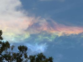 fire rainbow 10 by daslasher1