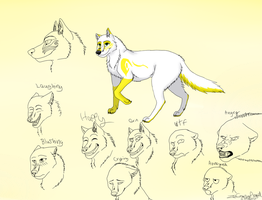 Angel wolf form ref by ZeCrazyAngel