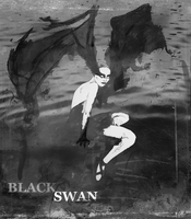 Black Swan by miracledrug