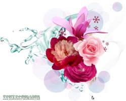 for you by ardillo2007