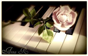 Pink Rose On A Piano (Edit) by AnnaMarie1994