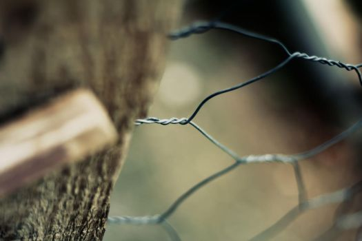 fence by QZER34