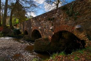 Minnowburn Bridge, Spring by Gerard1972