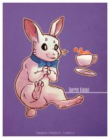 A Dapper Rabbit by Dapper-Rabbit
