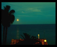 Full Moon 1_1 by ximocampo