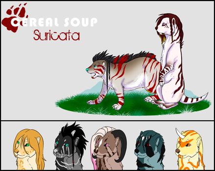 Cereal Soup Game: Suricata Class Template by UnknownLioness