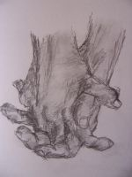 Gesture Hands by unknown-nobody